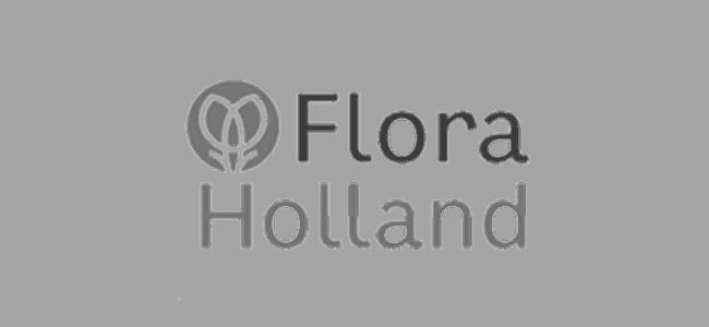 logo-floraholland-collaboration-bammboo
