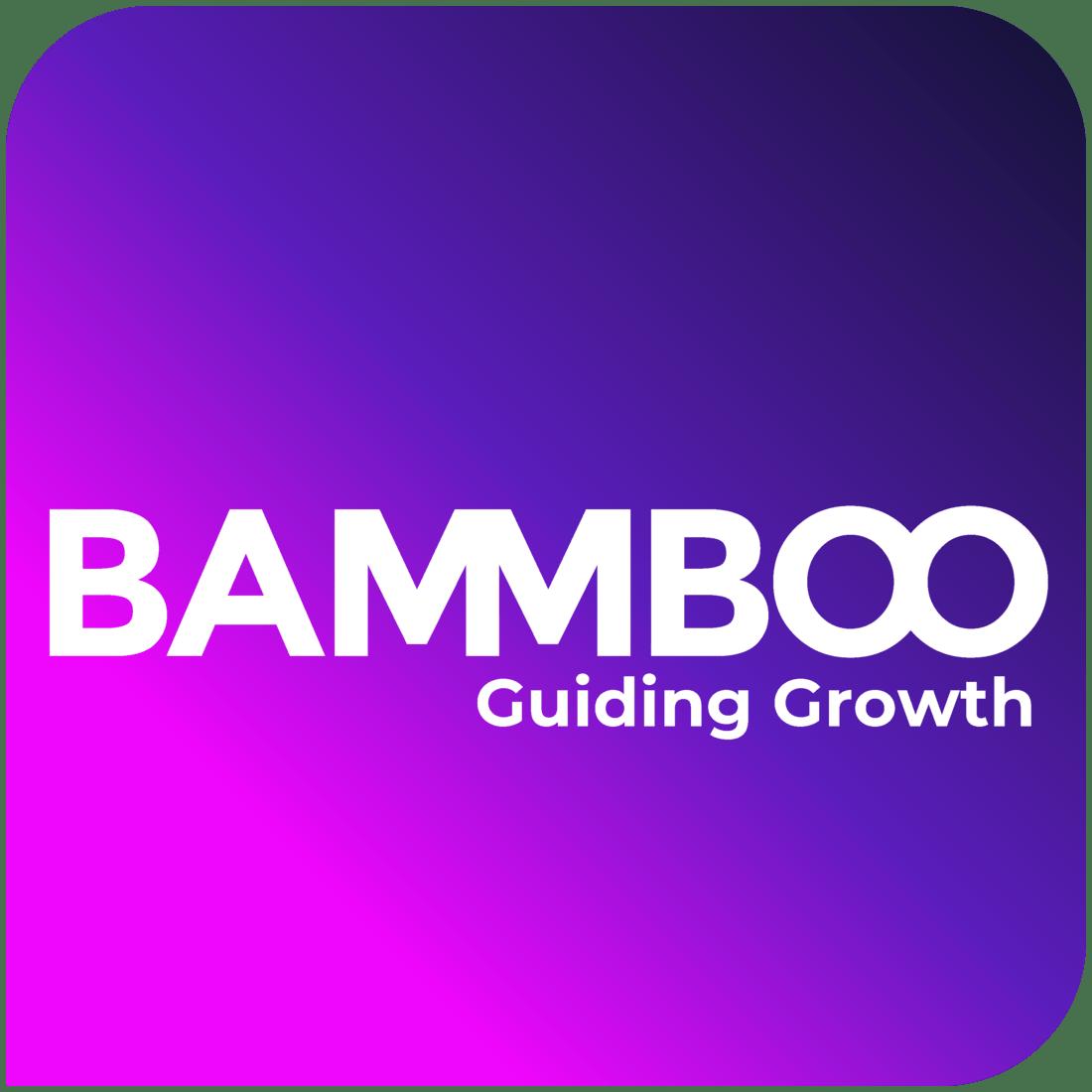 Bammboo Growth Hacking